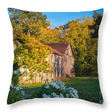 Old Beauty Throw Pillow by Rima Biswas