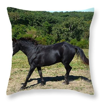 Throw Pillow featuring the digital art Old Black Horse Running by Jana Russon