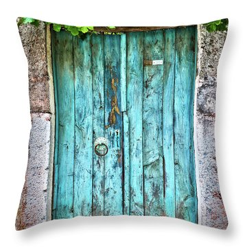 Old Wooden Door Throw Pillows