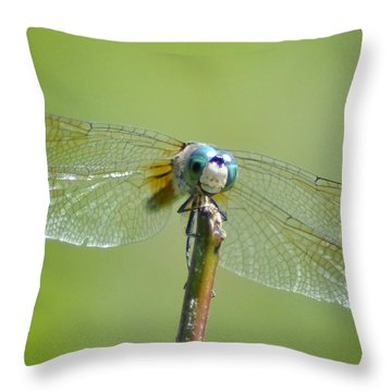 Old Blue Eyes - Blue Dragonfly Throw Pillow by Bill Cannon