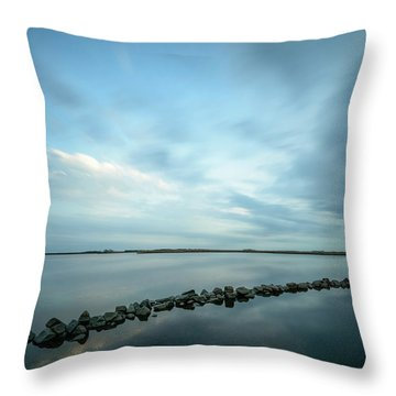Old Blue Morning Throw Pillow