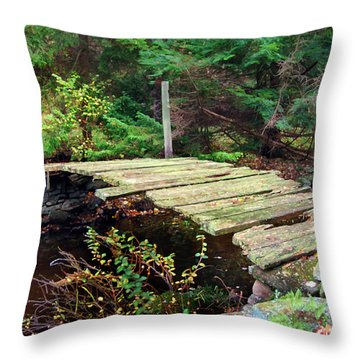 Throw Pillow featuring the photograph Old Bridge by Francesa Miller