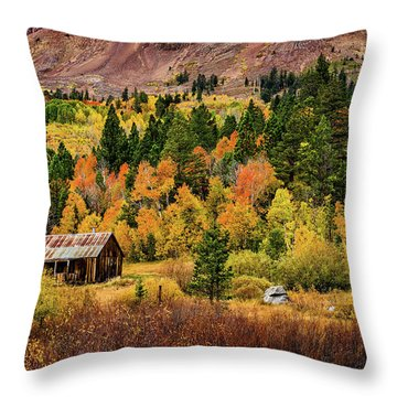Old Cabin In Hope Valley Throw Pillow