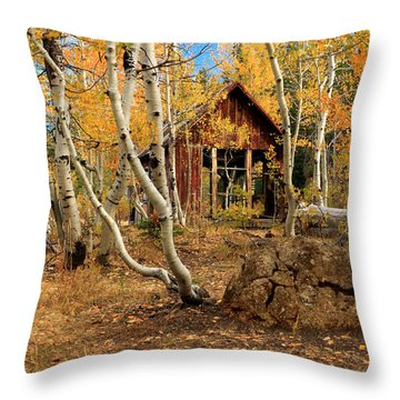 Old Cabin In The Aspens Throw Pillow by James Eddy