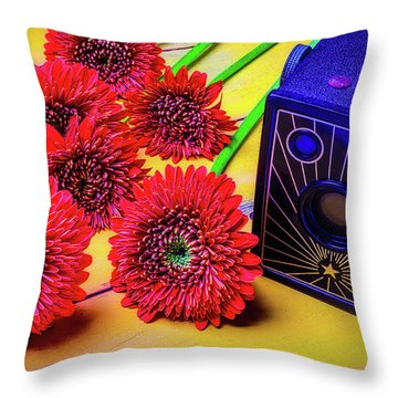 Old Camera And Dasies Throw Pillow by Garry Gay