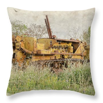 Old Cat Watercolor II Throw Pillow