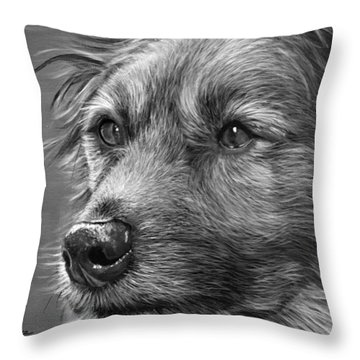 Old Charlie Throw Pillow
