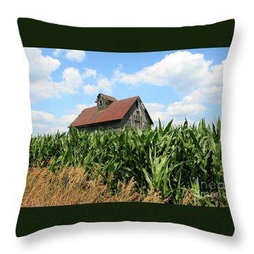Old Corn Crib Throw Pillow