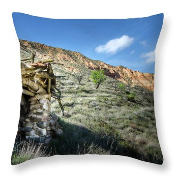 Old Country Hovel Throw Pillow by RicardMN Photography