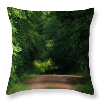 Throw Pillow featuring the photograph Old Dirt Road by Shelby Young