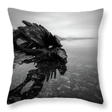 Old Driftwood Throw Pillow
