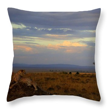 Old Earth Throw Pillow