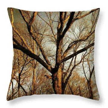 Old Faithful Throw Pillow by Amy Tyler