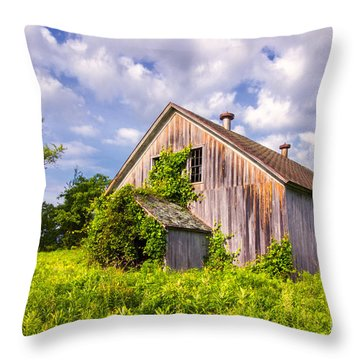 Morning Solitude Throw Pillow