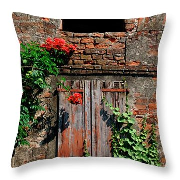 Old Farm Window Throw Pillow