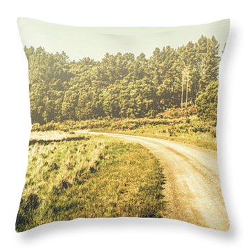 Old-fashioned Country Lane Throw Pillow