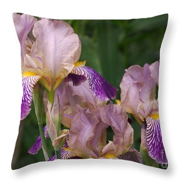 Old-fashioned Iris Throw Pillow