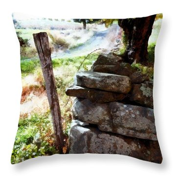 Throw Pillow featuring the photograph Old Fence Post Orchard by Janine Riley