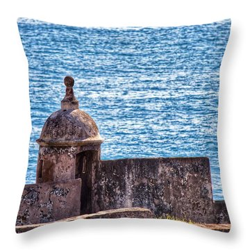Old Fort  Throw Pillow