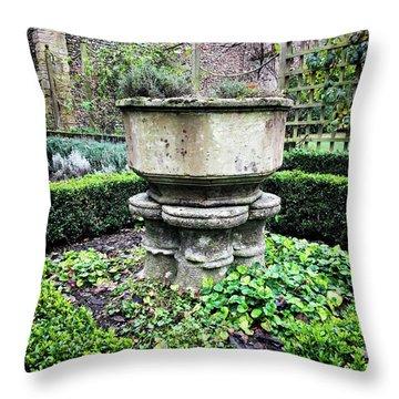 Old Garden Stone Trough Throw Pillow