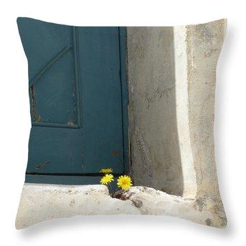 Old Greek Door Throw Pillow