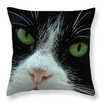 Old Green Eyes Throw Pillow by DigiArt Diaries by Vicky B Fuller