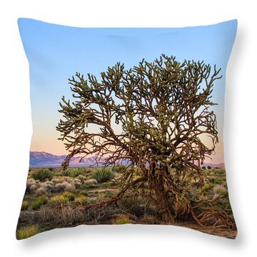Old Growth Cholla Cactus View 2 Throw Pillow