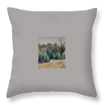 Throw Pillow featuring the painting Old Growth Forest by Patsy Sharpe
