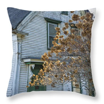 Old Home Throw Pillow by Alana Ranney