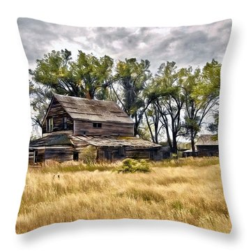 Old House And Barn Throw Pillow by James Steele