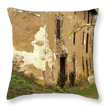 Throw Pillow featuring the photograph Old House In Pennsylvania by Emanuel Tanjala