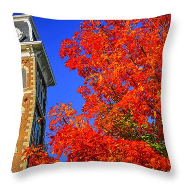 Old Main Maple Throw Pillow by Damon Shaw