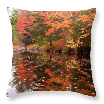 Throw Pillow featuring the photograph Old Main Road Stream by Jeff Folger