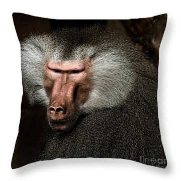 Throw Pillow featuring the photograph Old Male by Joerg Lingnau