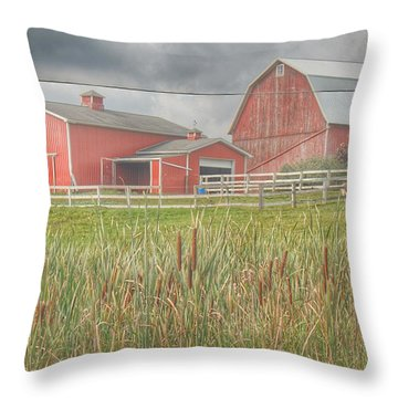0033 - Old Meets New Throw Pillow