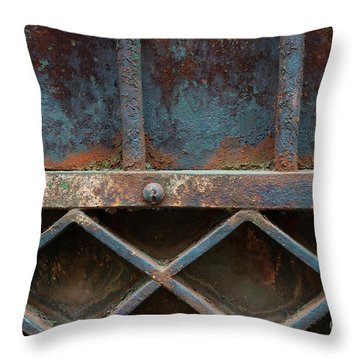 Throw Pillow featuring the photograph Old Metal Gate Detail by Elena Elisseeva