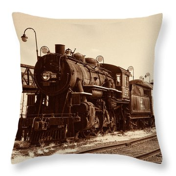 Old Number 519 Throw Pillow by Paul W Faust -  Impressions of Light