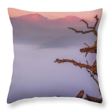 Old Oak And Mt. Diablo On A Foggy Morning Throw Pillow