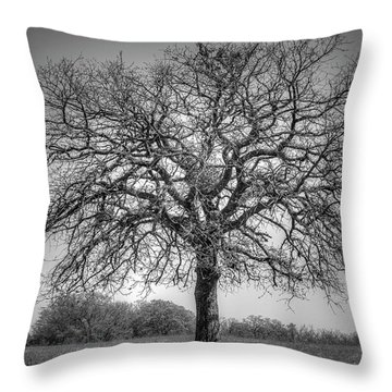 Old Oak Throw Pillow