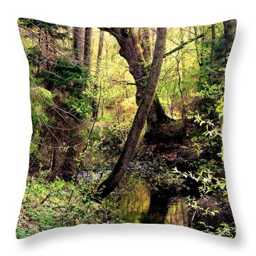 Old Oak Throw Pillow