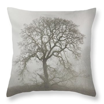 Throw Pillow featuring the photograph Old Oak Tree And Fog by Angie Vogel
