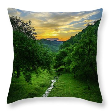 Old Orchard Glow Throw Pillow