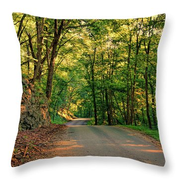 Throw Pillow featuring the photograph Old Plank Road by Cricket Hackmann