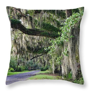 Old Plantation Road Throw Pillow