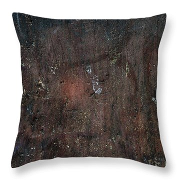 Throw Pillow featuring the photograph Old Plastered And Painted Wall by Elena Elisseeva