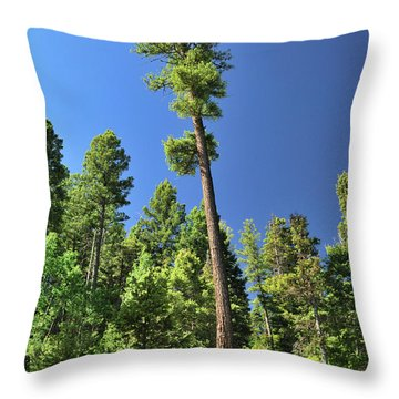 Old Ponderosa Throw Pillow