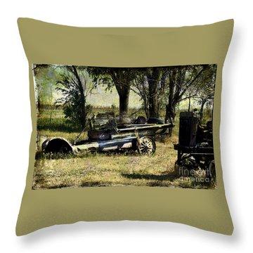 Old Rail Throw Pillow