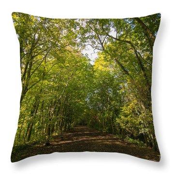 Old Railway Line Throw Pillow