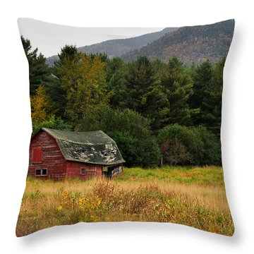 Old Red Barn In The Adirondacks Throw Pillow