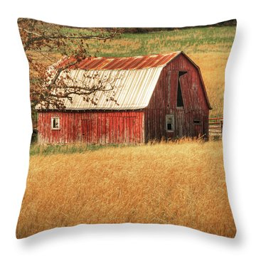 Old Red Barn Throw Pillow by Tamyra Ayles